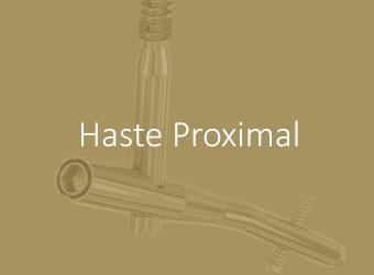 Hastes